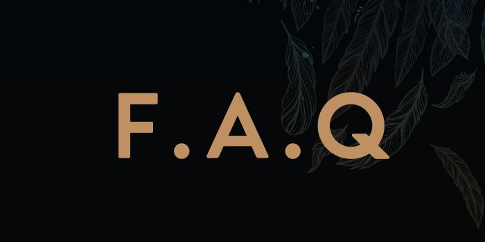 F.A.Q: Dreamcatcher no Brasil