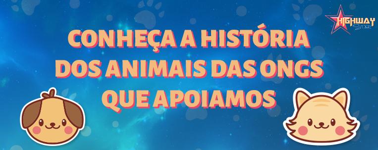 Conheça a história de alguns animais do Abrigo Balaio de Gato
